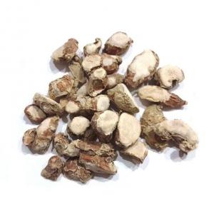 Ekangi (Root) 100 gm